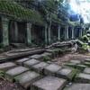 #アンコールワット個人ツアー(489) #タ•プローム寺院の雨季の風景