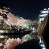 弘前公園の桜・・・数年前に撮っています(^^♪