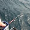 鯛ラバ リール 佐伯湾 第二はま丸