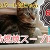 【レポ】脂肪燃焼スープダイエット・6日目/牛肉と野菜の日