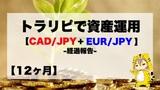 【12ヶ月目】トラリピ30万円資産運用結果報告