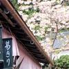 関西桜めぐり④ 4/7 吉野桜ハイキング(その1)