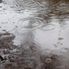 雨の日に走るかどうか、悩むのをやめた