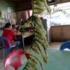 フィリピンのボホール島で食べ歩き