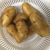 ツナポテトサラダ