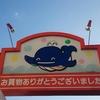 アキシマクジラ! 2