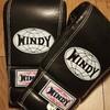 【ボクシング】30代からのボクシング - グローブの選び方(WINDY)