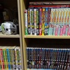 本棚が豊かになり、オタク生活が潤う。