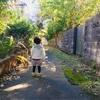 【2歳5ヶ月】最近のルーちゃん、つれづれ。
