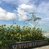 【旅行】シンガポール・チャンギ国際空港を楽しもう