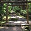 【福井 平泉寺白山神社】木と苔に囲まれて癒される。パワースポット的な雰囲気が抜群。