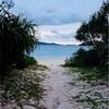 沖縄の離島で泳いでる間に通算アクセス数が10000超えてた...