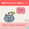 Don't be a chicken.  【直訳では分からない英語フレーズ#14】