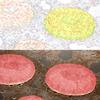 『衛宮さんちの今日のごはん』第六話「はじめてのハンバーグ」の作画をあらためて紹介