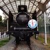 和歌山市 岡公園に静態保存されている、蒸気機関車「C 57119」と「和歌山軌道321号」について【思ひ出の車輌】