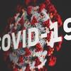 コロナウイルスのスウェーデンの状況