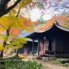 冬の湖西連峰。パラダイスからの絶景を眺め、普門寺で紅葉を楽しむ