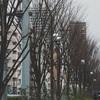 【小説】1 永遠に終わらない冬