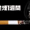 【禁煙1週間】禁煙で節約したお金で何が買える?2019年の今に買うべき7つのもの!