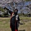 桜と忍者クネクネ2018春