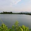 内屋敷下池(福岡県福智)
