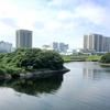 旧防波堤の緑地