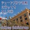 【ウィーン】シェーンブルン宮殿に行ってきました①