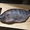 こちらの魚を日本風な煮魚にしてみました。