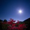 月と彼岸花(と、パンフォーカス星景のすすめ)
