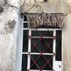 ハバナ旧市街の古い建物たち 〜ドアのフサフサは何を意味するのか?編〜