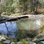雨期を越した池、春の作業、アヒル、鶏、ウズラ