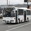 鹿児島交通(元京王バス) 991号車