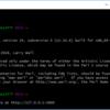 msys2をWindowsにインストールしてPerlを使う