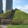上野毛自然公園・二子玉川公園 東京都世田谷区上野毛・玉川