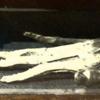 """処刑された罪人の手で作った""""栄光の手""""とは?"""