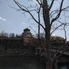 大阪ウォーク「大阪城」
