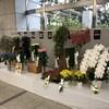 群馬県秋の花き品評会は銀賞