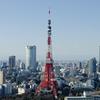 東京に上京したい看護師へ。転職活動の注意点教えてあげる。