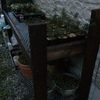 DIYと今日の庭