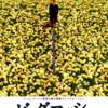 映画『ビッグ・フィッシュ』感想 ティム・バートンが描くファンタジーで結ばれる親子の絆 ※ネタバレあり