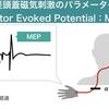 セラピストは必読!経頭蓋磁気刺激の知識:運動誘発電位
