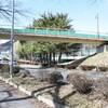 茅野市運動公園にある「リス専用歩道橋」を見てきた!