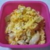 糖質制限(MEC食)信仰者の昼食弁当