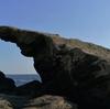 城ヶ島で自然を満喫!観光スポットの城ヶ島灯台と馬の背洞門を紹介!【三浦半島日帰り旅 No.3】