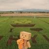 雨竜町 空知地方最大級の田んぼアートが生まれる街