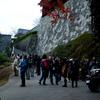 松山城山探鳥例会 12月 2012年最後の城山探鳥会!