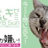 【セミナー開催】今からでも間に合う!猫様のための歯磨きゼミ