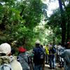 城山探鳥例会 2012年11月