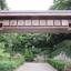 東京港野鳥公園を訪ねて