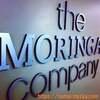モリンガならジージャ!ジージャのモリンガ・オレイフェラのスーパーミックスと市場のモリンガ。zija moringa supermix
